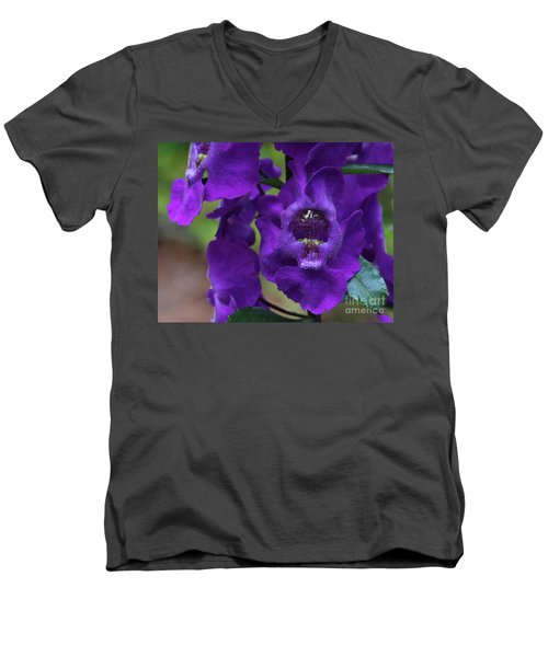 Angelonia Angustifolia Men's V-Neck T-Shirt