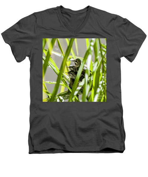 Men's V-Neck T-Shirt featuring the photograph Anna Hummer On Nest by Daniel Hebard