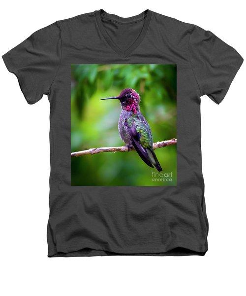 Anna Humming Bird Men's V-Neck T-Shirt