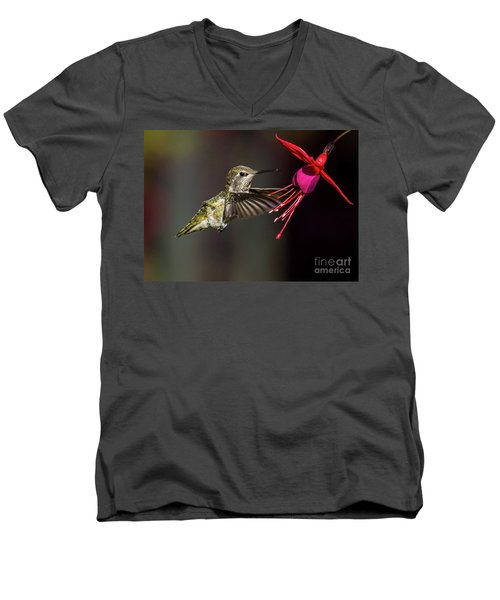 Anna Juvenile Hummingbird Men's V-Neck T-Shirt