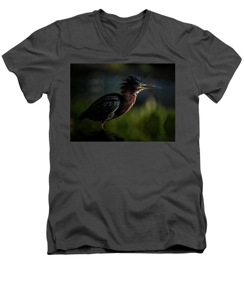 Another Bad Hair Day Men's V-Neck T-Shirt
