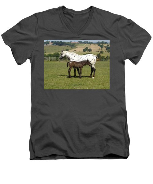 Appaloosa Mare And Foal Men's V-Neck T-Shirt