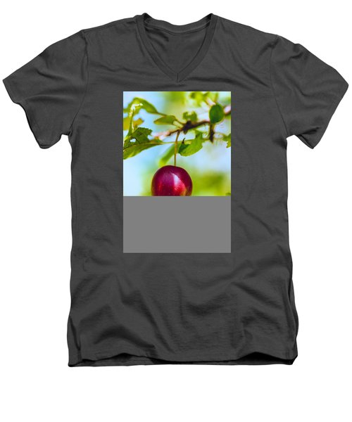 Crab Apple Men's V-Neck T-Shirt by Constantine Gregory