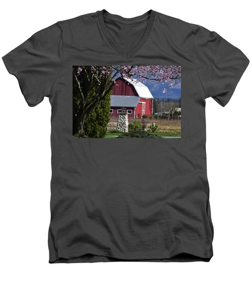 Apple Tree Pink And Barn Red Men's V-Neck T-Shirt