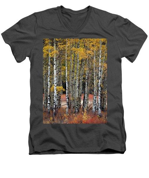 Appreciation Men's V-Neck T-Shirt