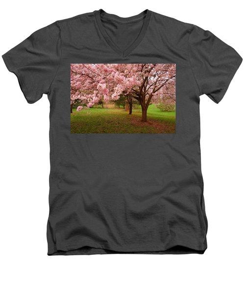 Approach Me - Holmdel Park Men's V-Neck T-Shirt