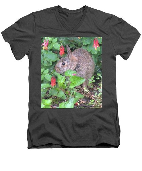 April Rabbit And Columbine Men's V-Neck T-Shirt by Peg Toliver