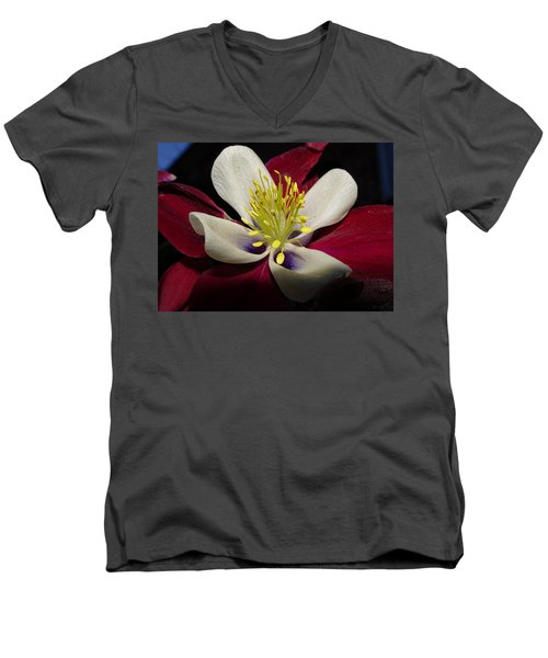 Aquilegia  Columbine Men's V-Neck T-Shirt