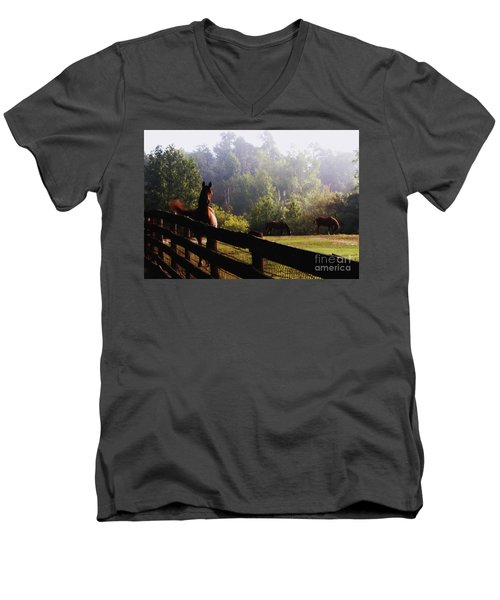 Men's V-Neck T-Shirt featuring the painting Arabian Horses In Field by Debra Crank
