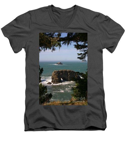 Arch Rock View Men's V-Neck T-Shirt