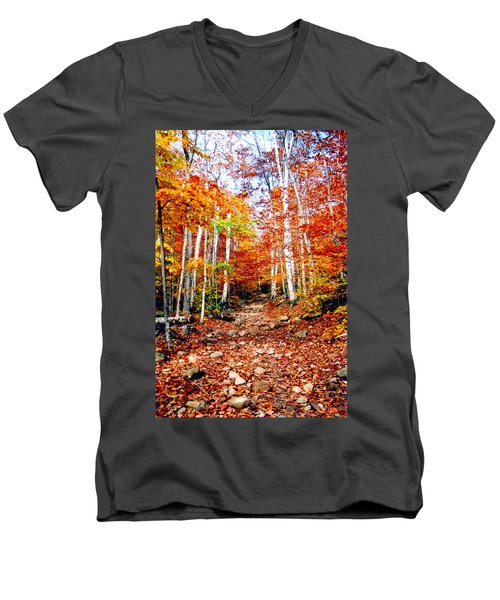 Arethusa Falls Trail Men's V-Neck T-Shirt by Greg Fortier