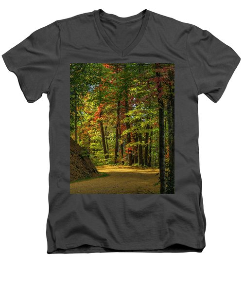 Around The Curve Men's V-Neck T-Shirt by Ulrich Burkhalter