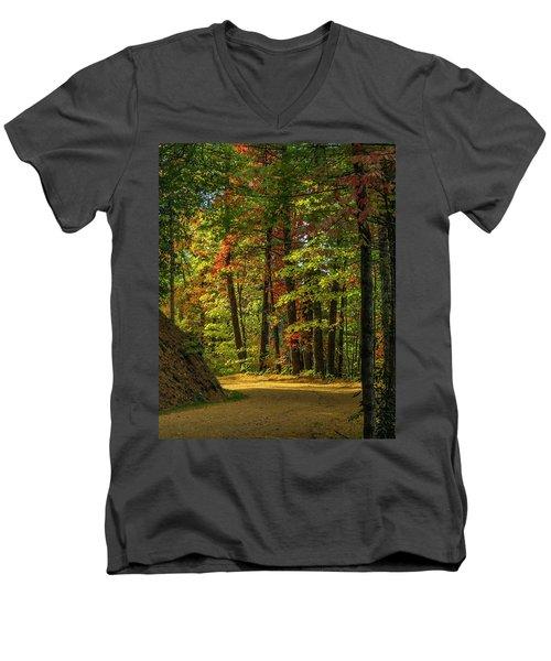 Around The Curve Men's V-Neck T-Shirt