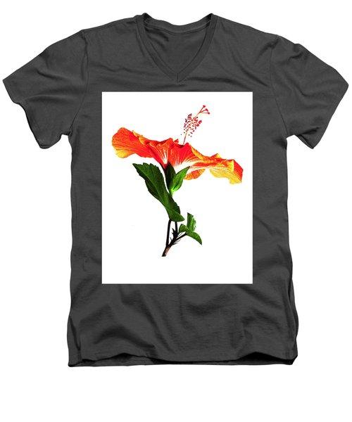 Art Orange Men's V-Neck T-Shirt