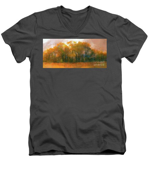 Men's V-Neck T-Shirt featuring the photograph Artistic Fall Colors In The Blue Ridge Ap by Dan Carmichael