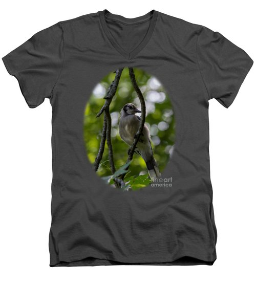 Afternoon Perch Men's V-Neck T-Shirt by Brian Manfra