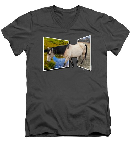 The Grass Is Always Greener On The Other Side Men's V-Neck T-Shirt by Shane Bechler