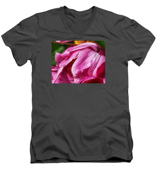 Pink Delight Men's V-Neck T-Shirt by Bill Kesler