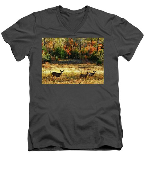 Deer Autumn Men's V-Neck T-Shirt