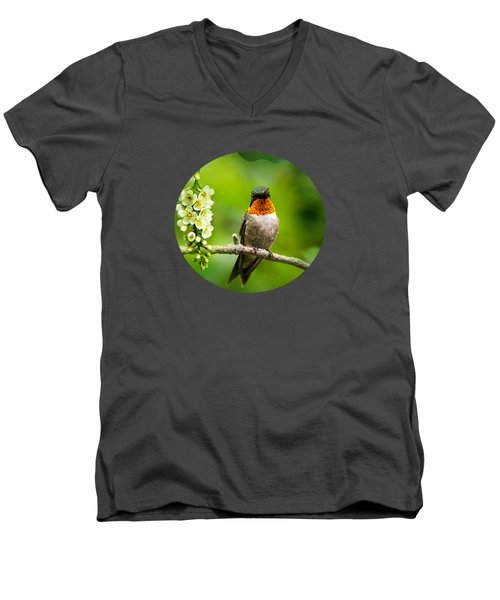 Male Ruby-throated Hummingbird With Showy Gorget Men's V-Neck T-Shirt by Christina Rollo