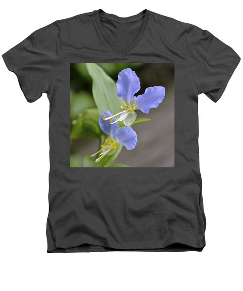 Virginia Dayflower Pair Men's V-Neck T-Shirt
