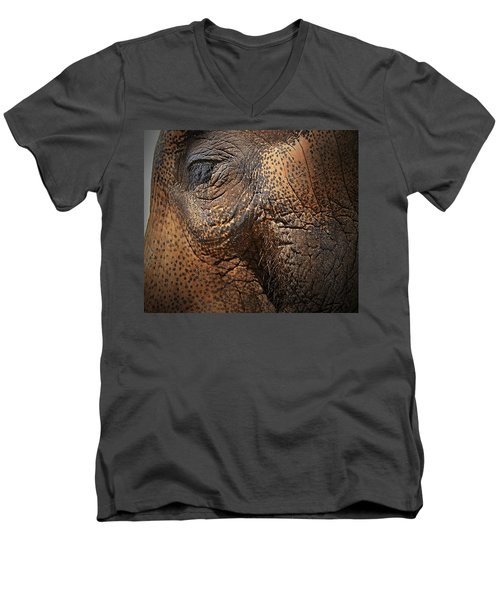 Asian Elephant Abstract Men's V-Neck T-Shirt