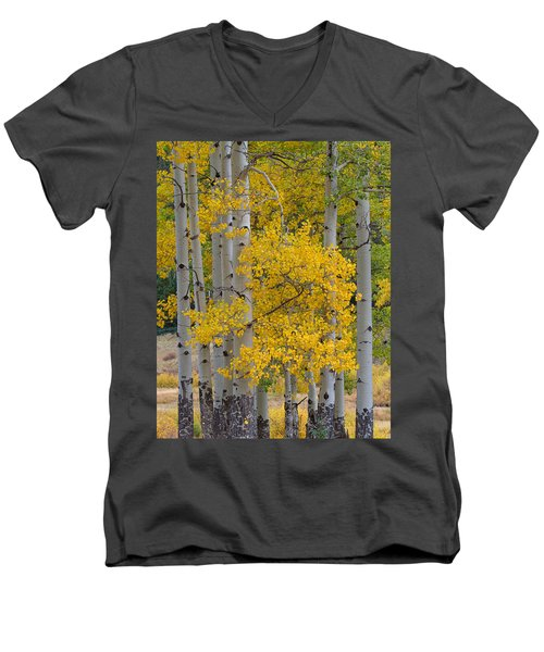 Aspen Bouquet Men's V-Neck T-Shirt