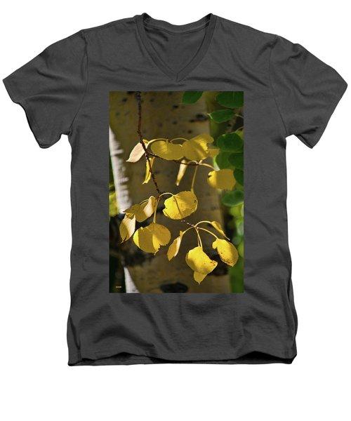 Men's V-Neck T-Shirt featuring the photograph Aspen Closeup by Dana Sohr