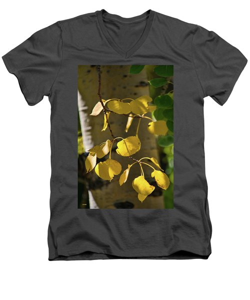 Aspen Closeup Men's V-Neck T-Shirt