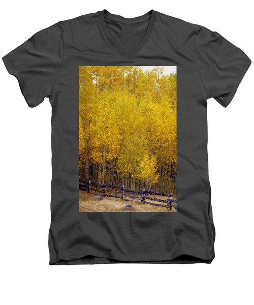 Aspen Fall 2 Men's V-Neck T-Shirt