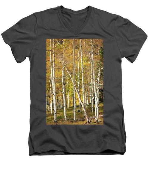 Aspen Forest Men's V-Neck T-Shirt