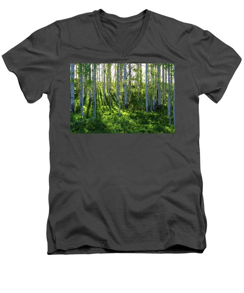 Aspen Morning 1 Men's V-Neck T-Shirt
