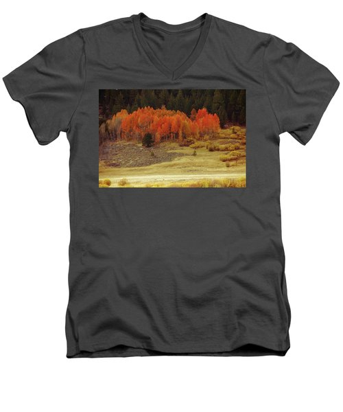 Aspen, October, Hope Valley Men's V-Neck T-Shirt by Michael Courtney