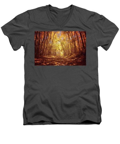 Aspen Road Men's V-Neck T-Shirt
