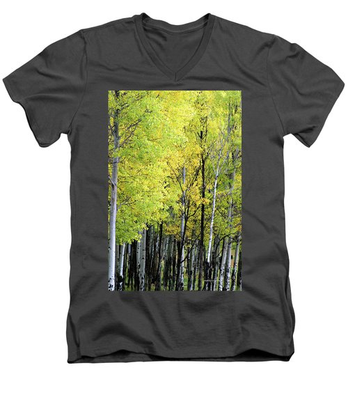 Aspen Splendor Men's V-Neck T-Shirt