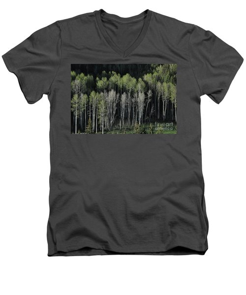 Aspen Spring Men's V-Neck T-Shirt