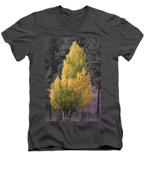 Aspen Tree Fall Colors Co Men's V-Neck T-Shirt