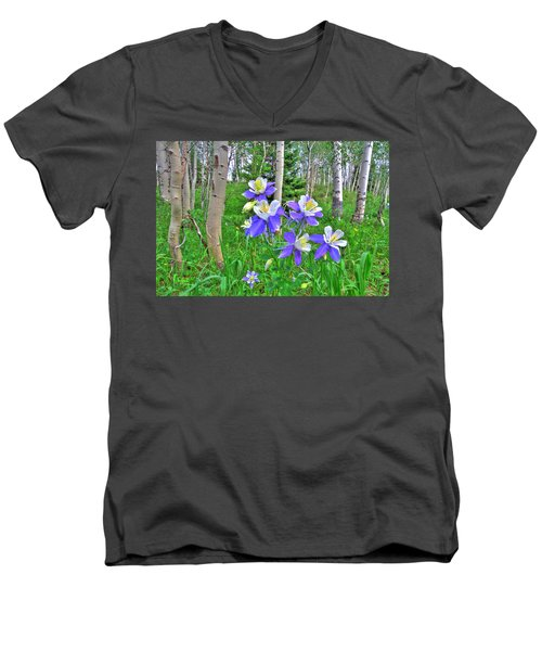 Aspens And Columbines Men's V-Neck T-Shirt