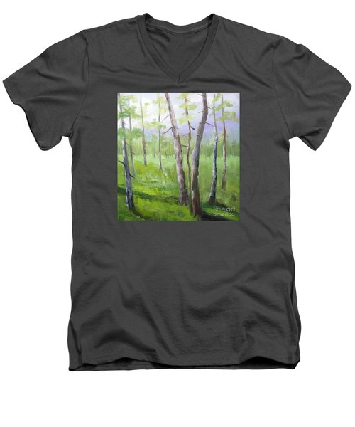 Aspens Soaring Men's V-Neck T-Shirt