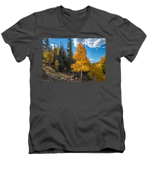 Aspen Tree In Fall Colors San Juan Mountains, Colorado. Men's V-Neck T-Shirt
