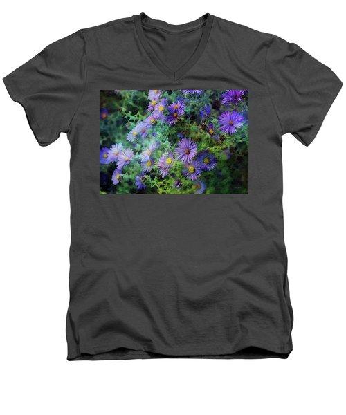 Aster 4468 Idp_2 Men's V-Neck T-Shirt