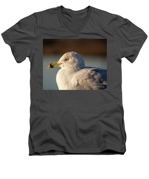 At Peace Men's V-Neck T-Shirt