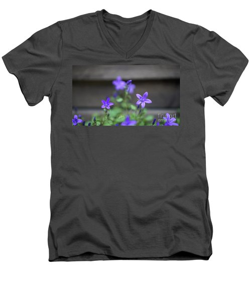 At The Fence Men's V-Neck T-Shirt