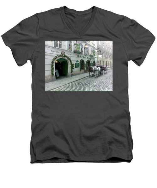 At The Golden Dragon's House Men's V-Neck T-Shirt