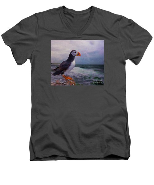 Atlantic Puffin Men's V-Neck T-Shirt