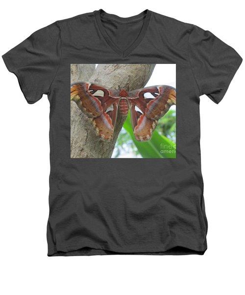 Atlas Butterfly Men's V-Neck T-Shirt by Jeepee Aero