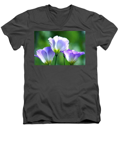 Men's V-Neck T-Shirt featuring the photograph August Echoes by Byron Varvarigos