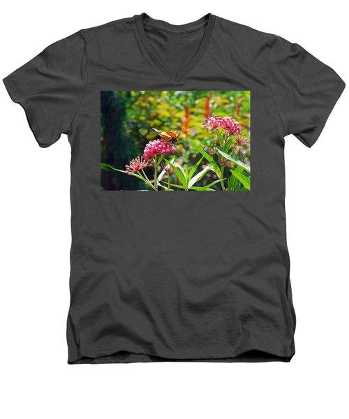 August Monarch Men's V-Neck T-Shirt