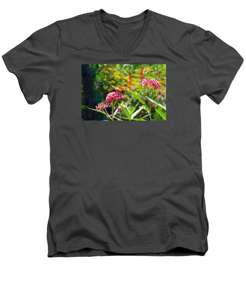 August Monarch Men's V-Neck T-Shirt