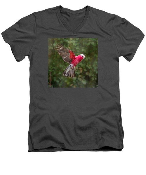 Australian Galah Parrot In Flight Men's V-Neck T-Shirt by Patti Deters